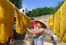 Cổ Chất- Làng tơ nổi tiếng đất Nam Định